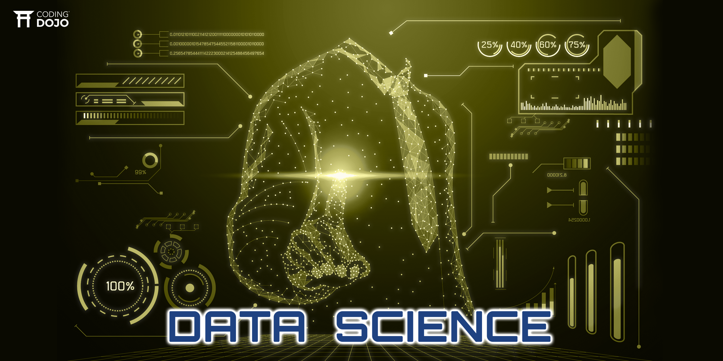 What is a Data Scientist and How to Become One?
